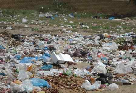Plastic-bag-litter